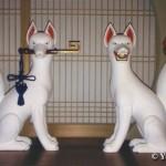 白狐 一対<br /> (小北稲荷神社)